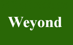 eyenov helps Weyond Technologies